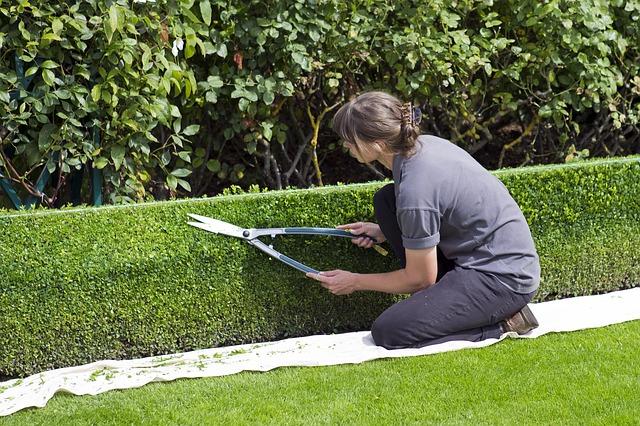 Kolik kalorií spálíte při práci na zahradě?